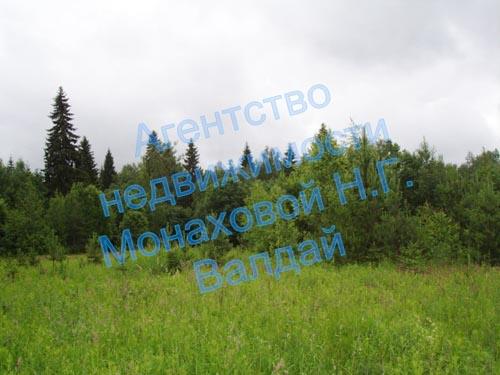 1_78.jpg